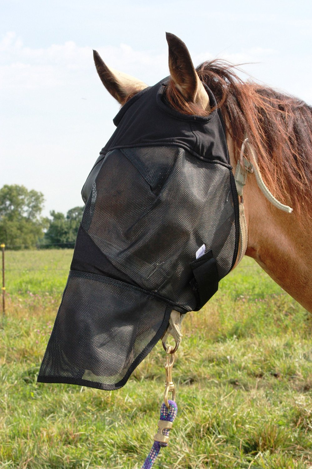 Horse Fly Mask with Long Nose, All Around Barn, Stable, Pasture, Trail Riding Fly and Sun Protection Standard Fly Mask - Style: With Long Nose - All Sizes