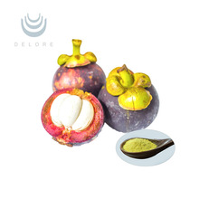 GMP Manufacturer Supply Mangosteen Rnd Extract Alpha Mangostin CAS No.6147-11-1