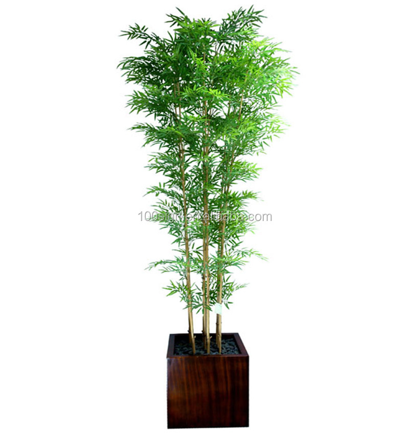Esterno fortunato piante di bamb artificiali per la for Vendita bambu