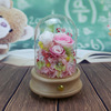 pink rose in glass dome