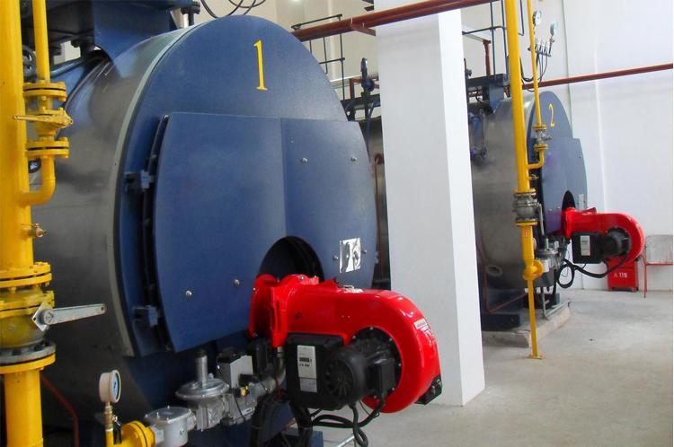 Neue Art 2 T/h Beste Qualität Gas-heizkessel Preise Biogaskessel ...