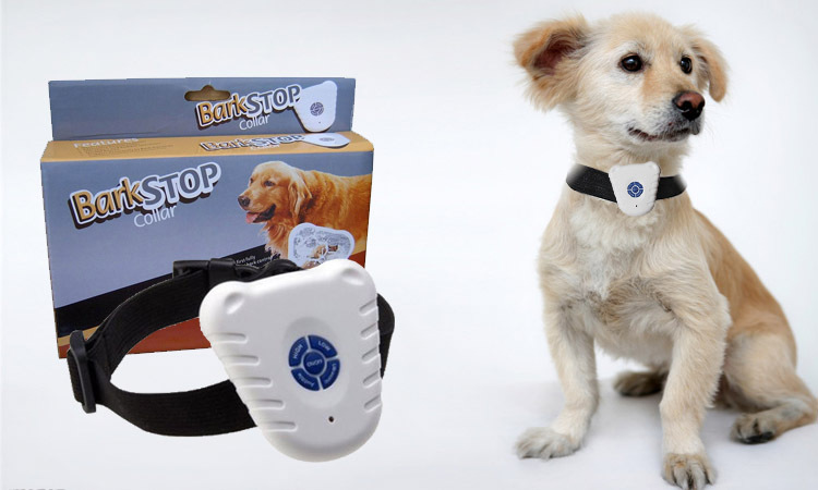 free spirit dog shock collar instructions