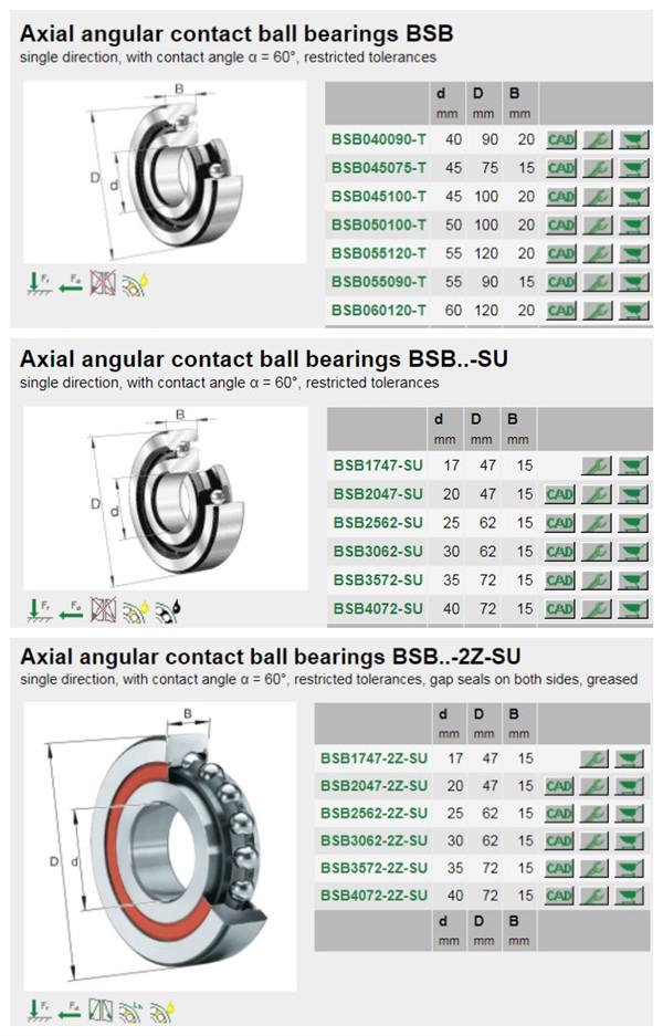 bearing BSB3062-2Z-SU .jpg