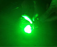 green red white 30w CREEs LEDs constant & fast red strobe Aircraft Wingtip Navigation strobe Light led bulb