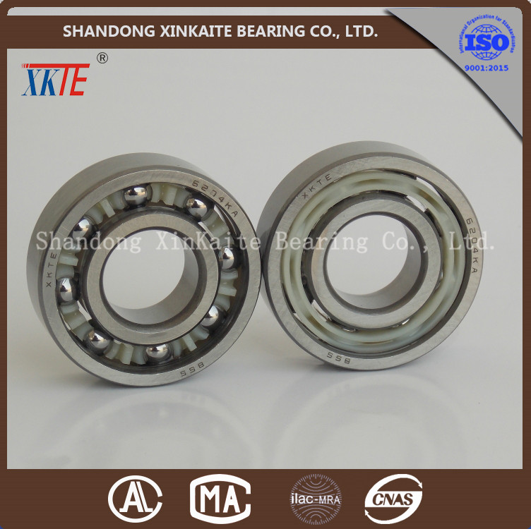 low price 6204TN9 nylon cage idler roller bearing made in yandian