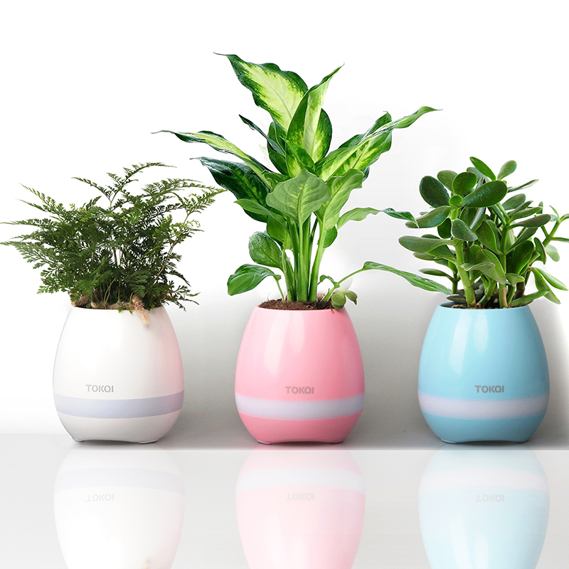 2017 K3 Creative speakers Smart Flowerpot Colorful LED Play Piano on Real Plant Inductive Music Flower Pots Bluetooth Speaker