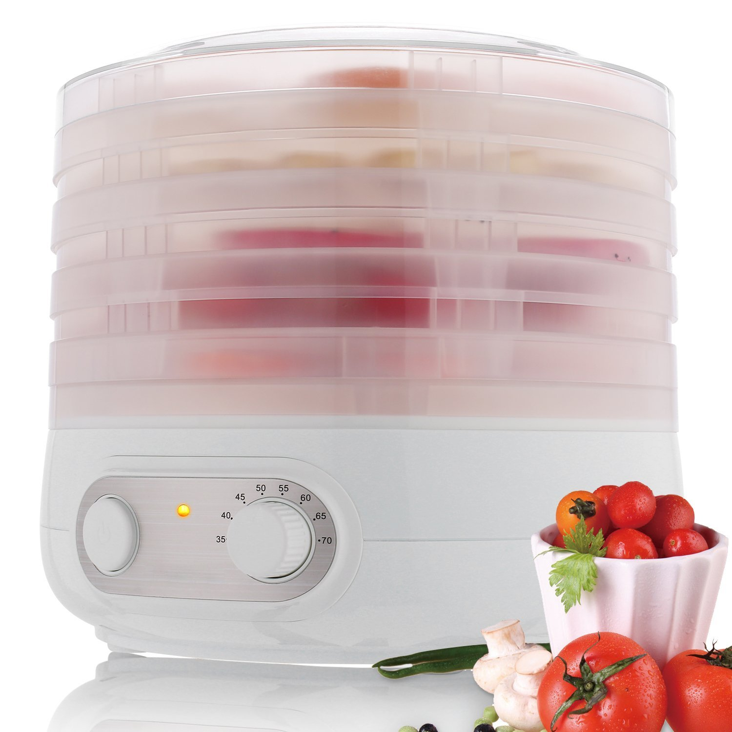Dryers for fruits and vegetables