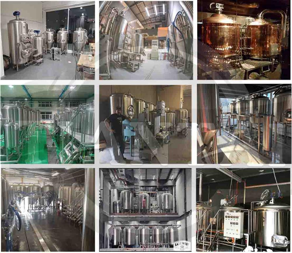 1000L turnkey two vessel herms brewing system
