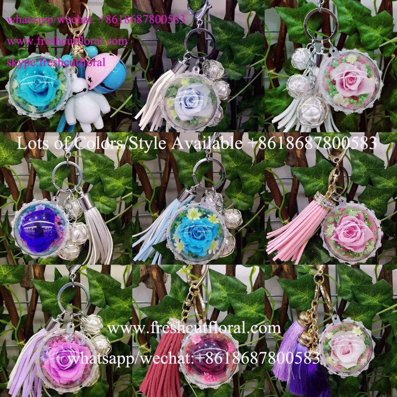 Professional Offer Preserved Flowers Roses , Japan Preserved Flowers In Glass For Real Flower Wedding Bouquets