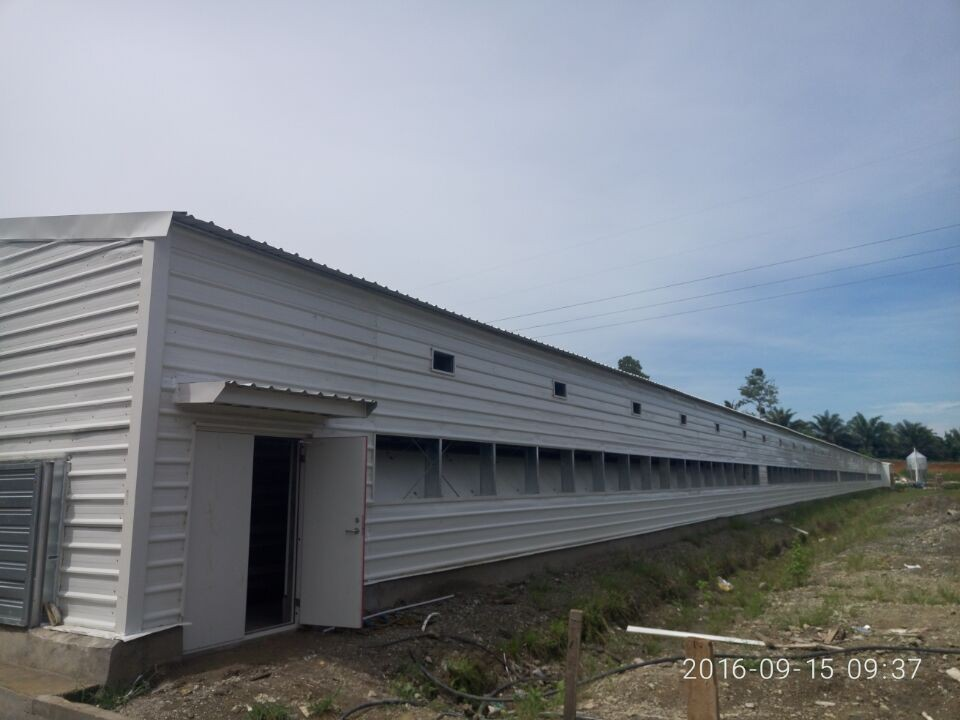Poultry House Construction Chicken Structure Housing