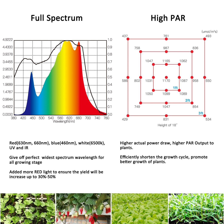 Phlizon 400w 640w 800w High Power Samsung Led Grow Strip