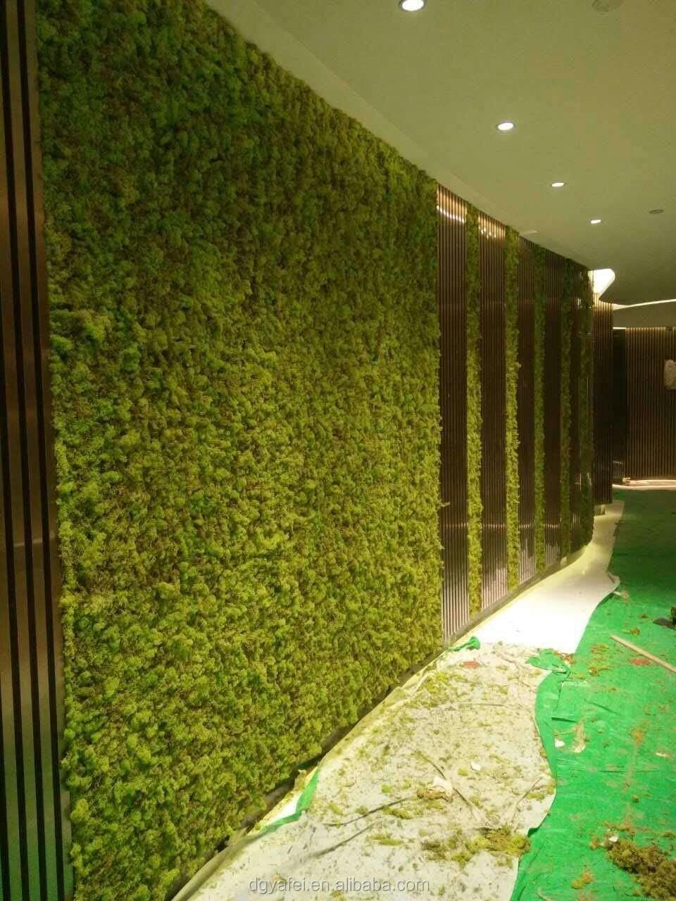 Enchanting Moss Wall Decor Pattern - Wall Art Collections ...