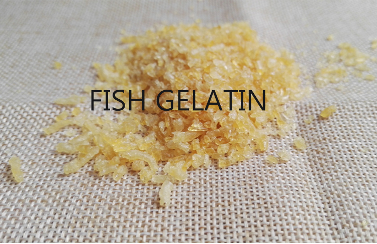 Wholesale Factory Low Price Marine Unflavored Fish Gelatin Food Additives
