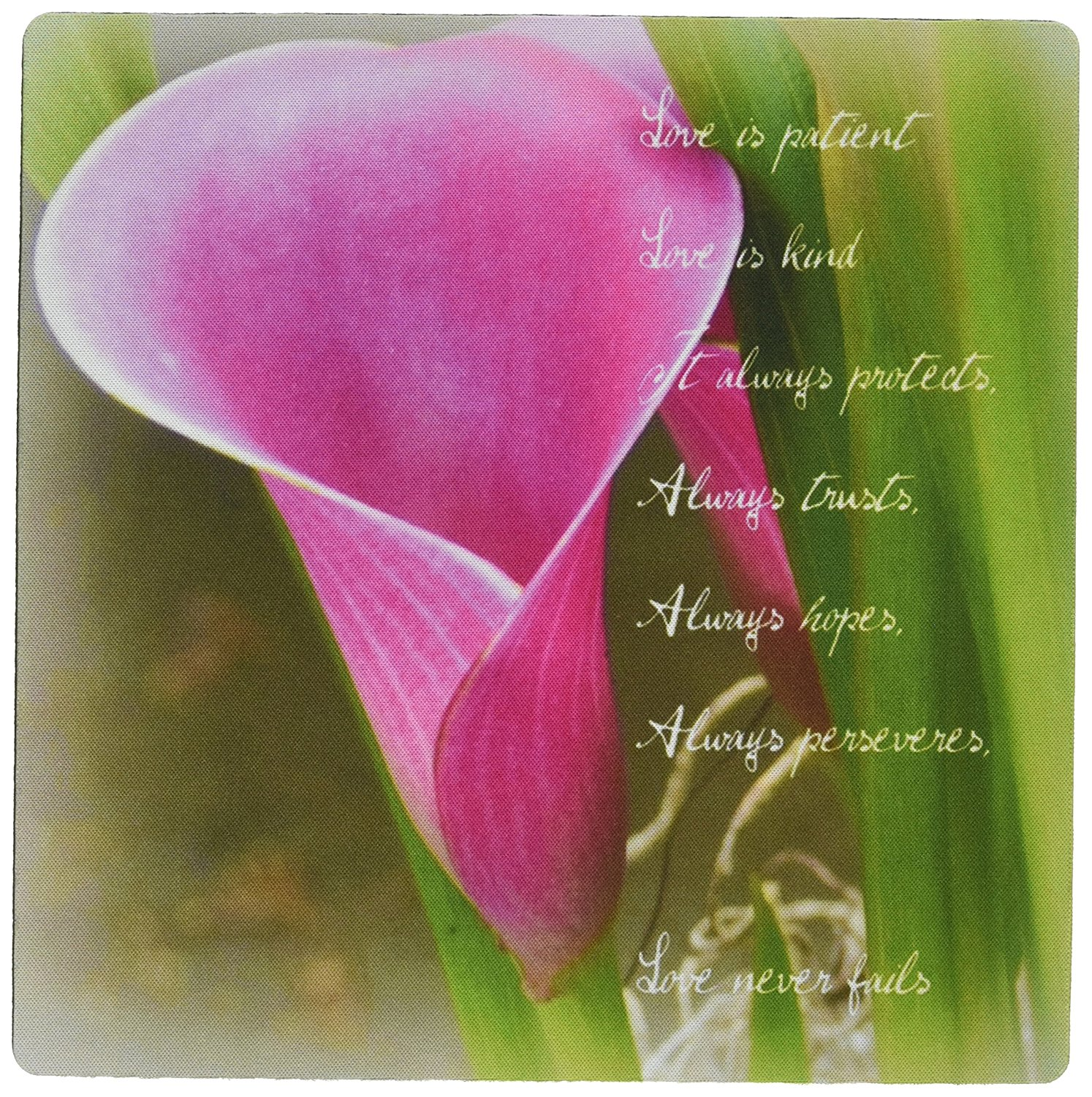 Cheap lily pad and flower find lily pad and flower deals on line at get quotations 3drose llc 8 x 8 x 025 inches love is patient pink calla lily flower photography izmirmasajfo