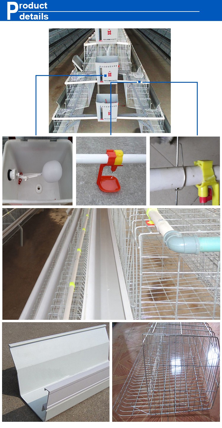 Hot Sale 3/4/5 Tiers chicken cage layer chicken cage chicken egg cage chicken farm design