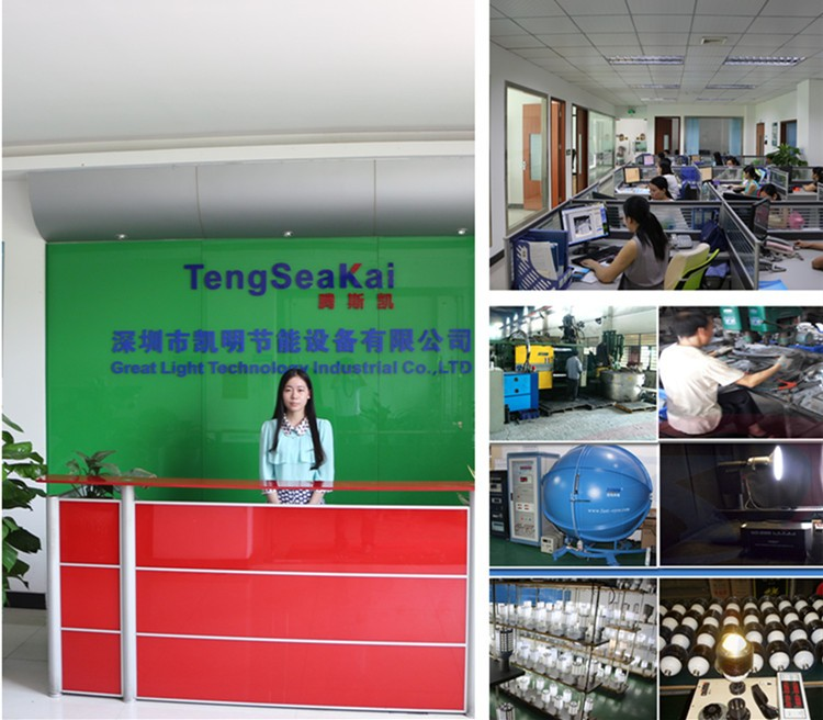 Shenzhen Kaiming led light factory