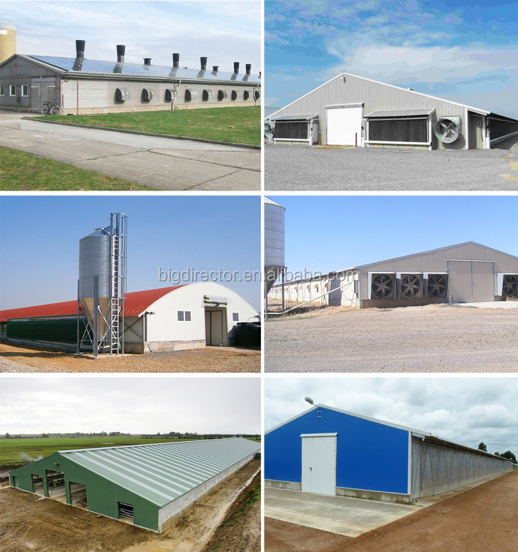 Architecture Design Houses For Steel Cowshed Poultry Buildings ...