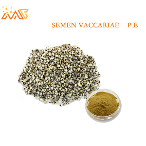 Supply with best price, 10:1, Semen Vaccariae Extract P.E./Semen Vaccariae Extract Powder/Wholesale wang bu liu xing extract