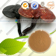 Fda registrado natural extracto de ganoderma