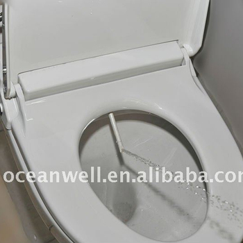 Fine Toilet Seat With Water Jet Maryanlinux Ocoug Best Dining Table And Chair Ideas Images Ocougorg