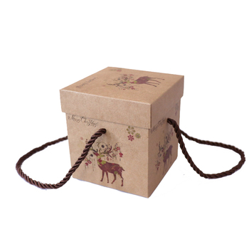 Creative design portable christmas eve apple box luxury packaging with handle