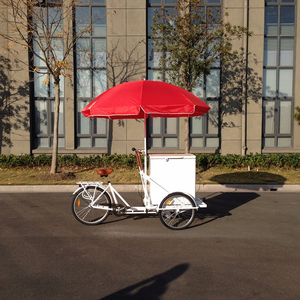 Hot sale ice cream bike with single speed cargo bike /bicycle/cycle/three wheel bicycle for adults/tricycle bike UB 9027BW