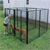 large aluminium dog cage box / used dog kennels and runs for sale