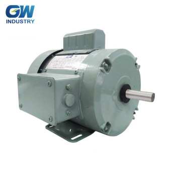 GW ELECTRIC single phase ac farm duty motor 230v