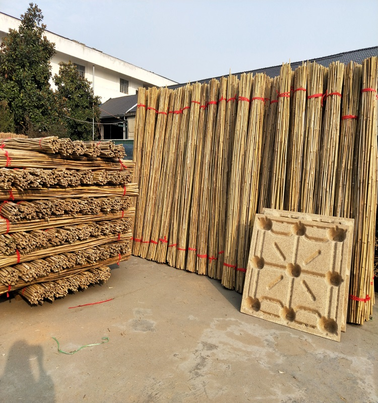 Wy-L535 [Wholesale] Bamboo Raw Materials - Natural Tam Vong Bamboo Pole Solid / Cane - Dry Bamboo Decor, Builders