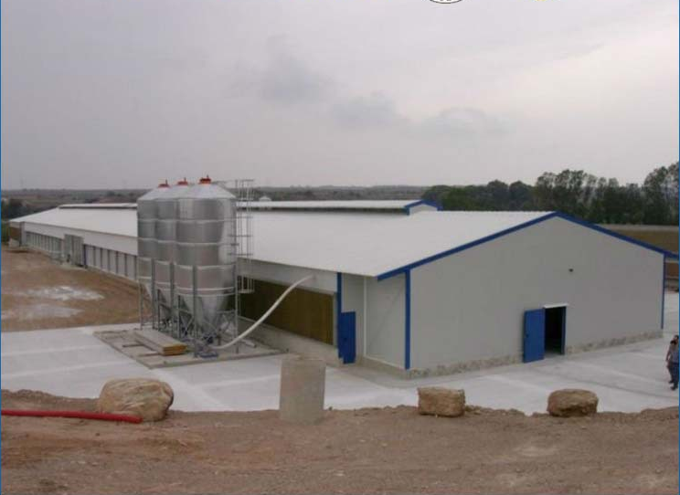 Fine Price Climate Control Shed Poultry Farming Buy
