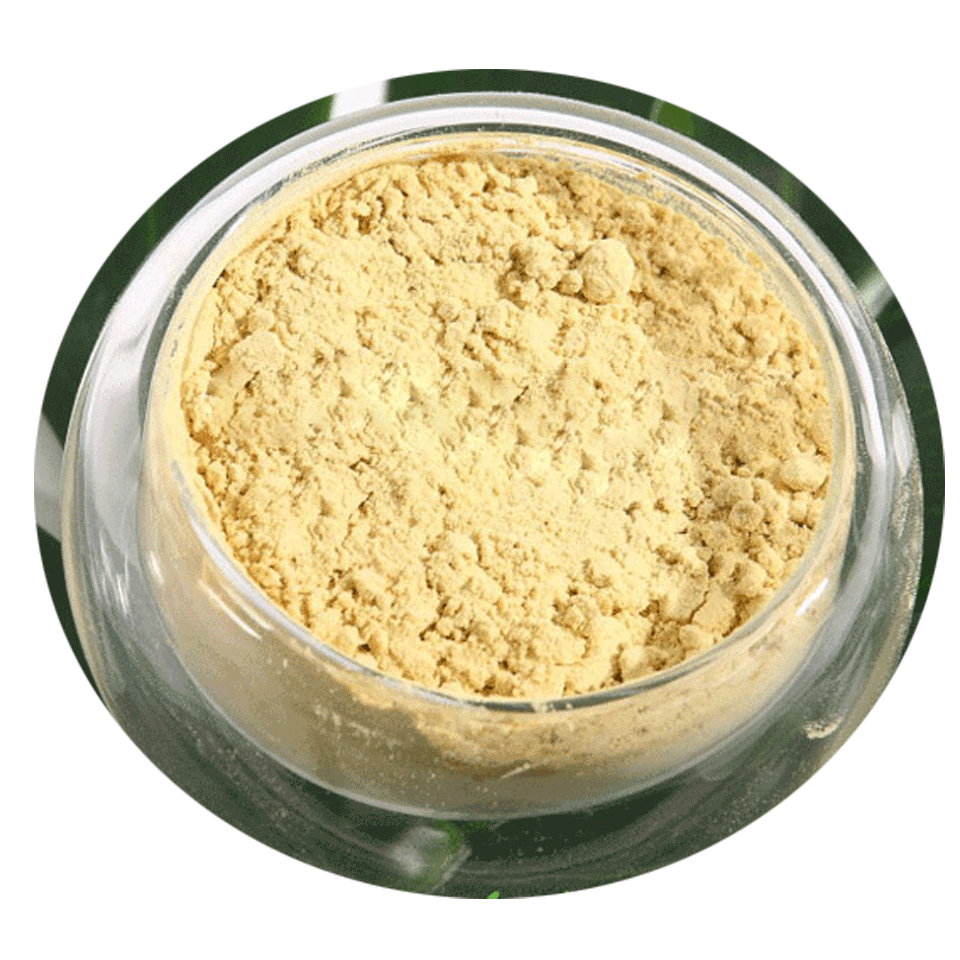 Touchhealthy supply Natural Durian Extract Powder/ Jackfruit Extract Powder