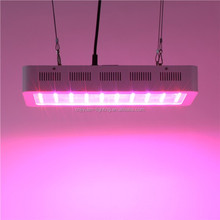 High quality led grow light 3w chip epistar 1000w full spectrum dragon fruit led lighting