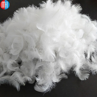 China cheap small white duck down feathers for sale 2-4cm