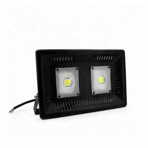 Hot sell 2018 Modern design outdoor COB 100w led spotlights