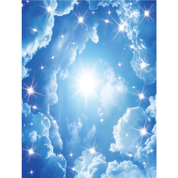 Bright Blue 3d Ceiling Wallpaper Price Sky For Home Decoration