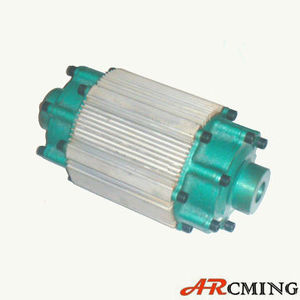 Electric Vehicle BLDC motors