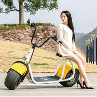 2016 newest citycoco 2 wheel off road electric bike ,two wheel self balance electirc scooter