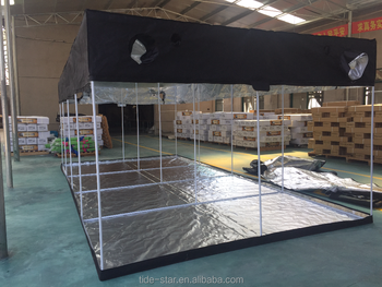 Hydroponics-grow-green-room-grow-tent.pn