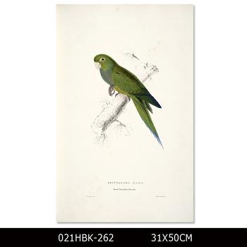 Profesyonel Sanatçı Tasarım Modern Kuş Boyama Yüksek Kaliteli