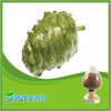 Fruit powder juice powder noni fruit juice concentrate