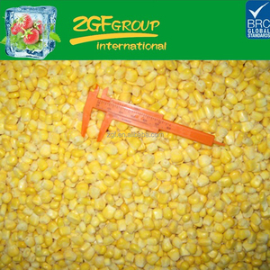 Chinese IQF steamed blanched iqf frozen sweet corn yellow corn