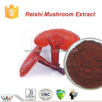 Health ans Emdical herbal Plant Ganoderma Lucidum Karst Reishi Mushroom extract
