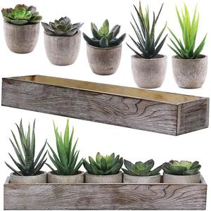 Hot sell Succulent Cactus Aloe Potted Plant Arrangements Decorative Assorted Potted Artificial Succulents Plants in Gray Pots