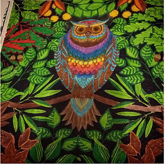 Secret Garden Adult Coloring BookWholesales Enchanted