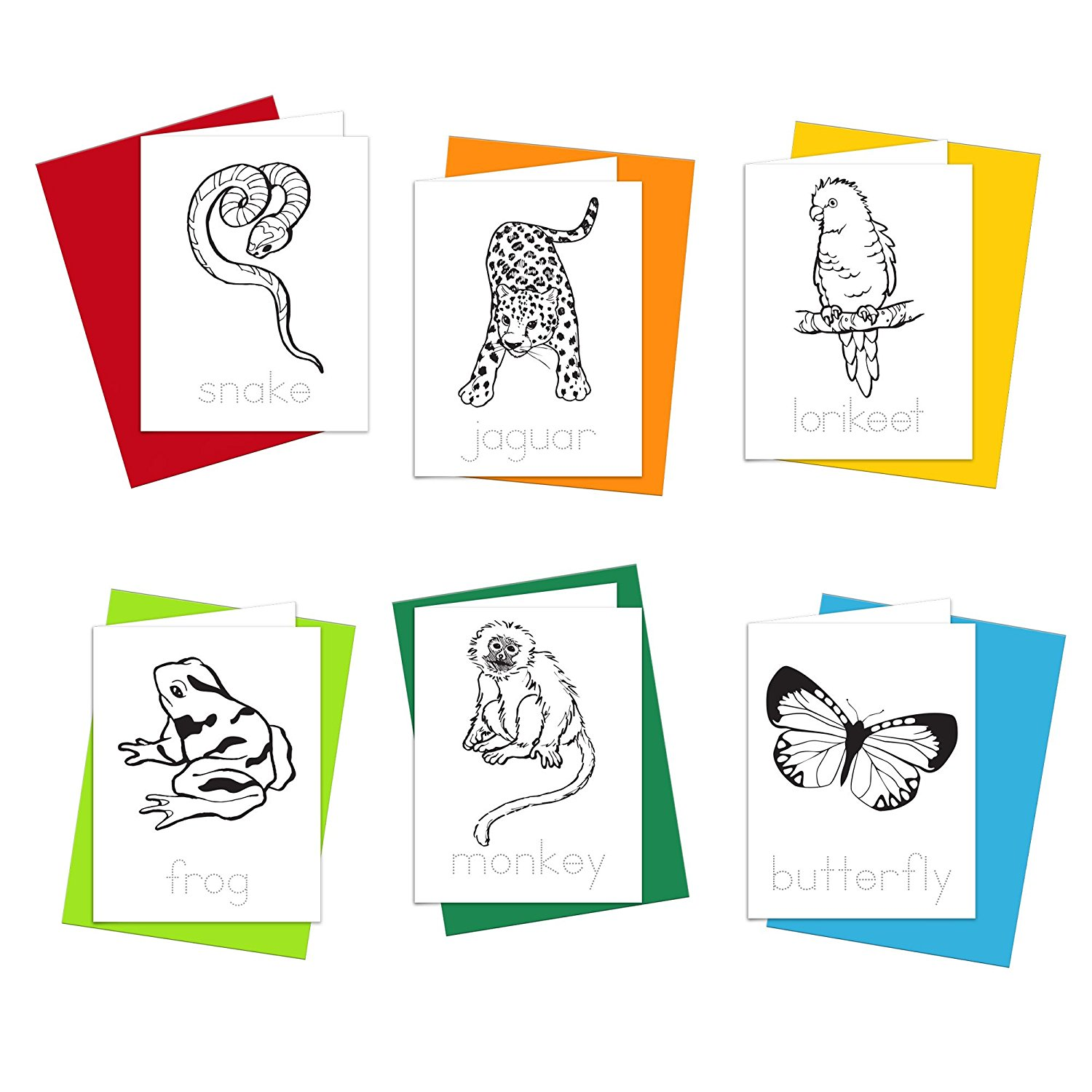 Note Cards - Rainforest Animals Greeting Cards for Kids to Color, Trace Letters and Practice Writing - Eco-friendly Stationery for Children - 100% Recycled Note Cards with Envelopes – Blank Inside