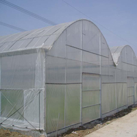 The Cheapest Hot Sale Mappower Agricultural Plastic Greenhouse