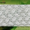 Factory Supply Elastic Lace Fabric Free Sample