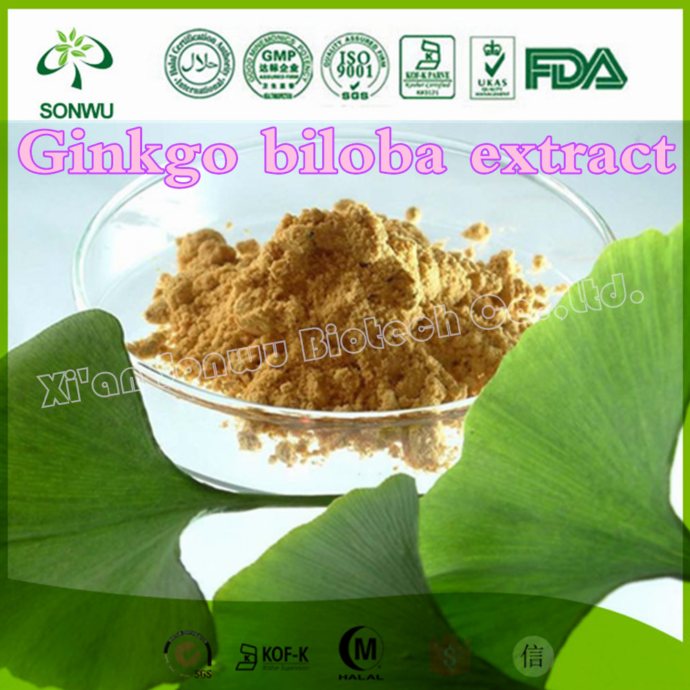 Natural ginkgo biloba leaf extract powder/ginkgo biloba extract supplier