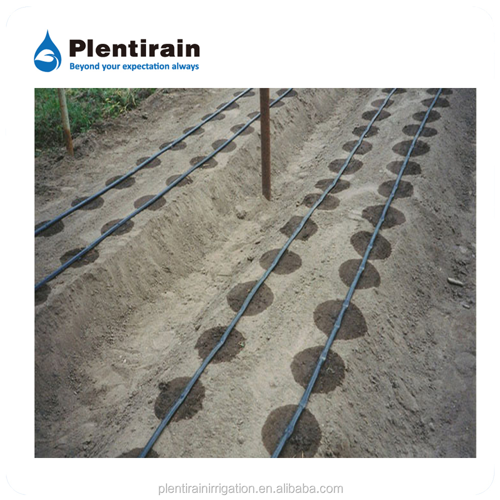 Drip water irrigation system for plants