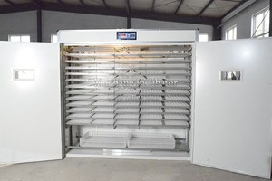 dezhou factory 5280incubator fully automatic eggs incubator 5280 eggs incubator price in india